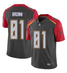 Nike Tampa Bay Buccaneers 81 Antonio Brown Gray Men Stitched NFL Limited Inverted Legend Jersey