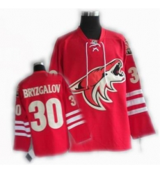 cheap Phoenix Coyotes jersey #30 BRYZGALOV jersey red