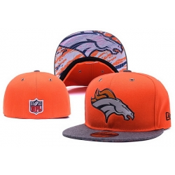 NFL Fitted Cap 039